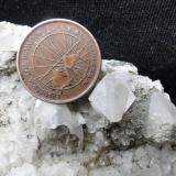 Detalles en la foto anterior, la moneda tiene el mismo tamaño que la moneda de un centavo estadounidense. (Autor: L. Alejandro F.G.)