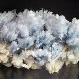 Barite Cavnic, Maramures, Romania 5.1 x 8.7 cm. Lustrous pale blue bladed barite crystals on light tan barite. (Author: crosstimber)