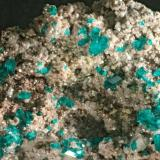 Dioptase on dolomite Tsumeb, Namibia f.o.v. 3 cm small but very sharp crystals (Author: Herman van Dennebroek)