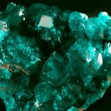 Dioptase Tsumeb, Namibia crytals up to 5 mm (Author: Herman van Dennebroek)
