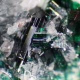 Antlerite Chuquicamata Mine, Chuquicamata District, Calama, El Loa Province, Antofagasta Region, Chile Photo width is 5mm  (Author: crocoite)