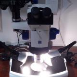 El microscopio una vez automatizado (Autor: Oscar Fernandez)