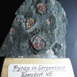 Piropo Ebersdorf, Leiben, Austria 6 x 5 cm. Piropos en serpentinita.  He conservado la etiqueta original en la peana de madera. (Autor: prcantos)