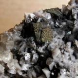 Marcasita, calcita, dolomita Benchmark Quarry, St. Johnsville, New York, USA área de visión: 3,5 x 3,5 cm aprox. (Autor: molsina)