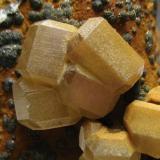Mimetita Mt. Bonnie Mine, Grove Hill, Victoria-Daley Shire, Northern Territory, Australia 6 x 4 x 4 cm. Detalle de los cristales de 7 mm. Prismas hexagonales biterminados con las caras de la pirámide rematadas por pinacoide basal. (Autor: Antonio Alcaide)