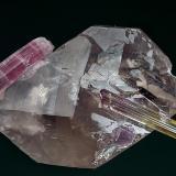 Tourmaline, Quartz, Lepidolite Himalaya Mine, Mesa Grande District, San Diego Co., California, USA 6.5 x 4.3 cm (Author: am mizunaka)