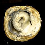 Cuarzo var. Ágata y calcedonia - Fluorescente Dugway Geode Camas, Zona Dugway Pass, Juab Co. , Utah , EE.UU. 40 x 38 x 32 mm (Autor: Daniel C.M.)