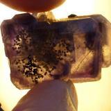 Fluorita Cuarzo y Esfalerita Naica, Chihuahua, México 3 x 2 cm.  Foto obtenida con luz artificial (Autor: javier ruiz martin)