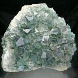 """Fluorite White's Level, Middlehope Shield Mine, Weardale, England 19x17x6 cm overall, largest crystal 2.5 cm. A very large find of green fluorite specimens occurred at this mine in 1818, and is the first recorded find of specimens in the Weardale area. Specimens can still occasionally be found offered for sale, though the location is usually given incorrectly as """"Heights Mine"""" and now """"Rogerley."""" (Author: Jesse Fisher)"""