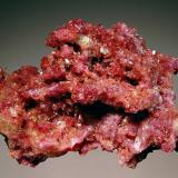 Vesuvianite Jeffrey Mine, Asbestos, Estrie, Quebec, Canada 4.7 x 7.3 cm. A vuggy matrix filled with lustrous, purple crystals of vesuvianite. (Author: crosstimber)
