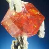 Grossular (var. Hessonite) on Diopside Asbestos Mine, Eden Mills, Vermont, USA 1.3 cm across  Jeff Scovil photo (Author: John Medici)