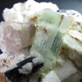 Turmalina, berilo, apatito y feldespato Norte de Pakistán 5 x 6'5 cm. Detalle de los cristales. (Autor: prcantos)