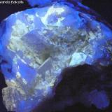 Aragonito, dolomita.- Fluorescente Cantera Azcárate (Cantera Azkarate), Eugui (Eugi), Esteríbar (Esteribar), Navarra, España Tamaño de la pieza:8 x 6,5 x 5 cm. Fluorescencia de los pequeños cristales de aragonito. El color azul corresponde a la dolomita. El aragonito da fluorescencia de un color amarillo claro chillón (en la foto aparece más bien blanco). Las zonas blancas más fuertes corresponden también a aragonito. (Autor: Frederic Varela)