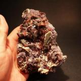 Tourmaline, Lepidolite Big Kahuna II Zone, Baker Boulevard(level), Oceanview Mine, Pala, San Diego County, California 13.3 x 9.4 cm (Author: Don Lum)