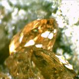 Topaz Wah Wah Mountains, Beaver County, Utah,USA 1cm x.5cm (Author: Mark Ost)