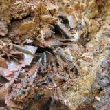 BaritaMina Sarita, Bezas, Comarca de la Sierra de Albarracín, Teruel, Aragón, EspañaCristal mayor 2 cm. (Autor: Miguel Ángel Martinez)