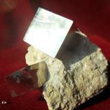 pyrite Victoria Mine, Navajún, La Rioja, Spain 2 cm (main crystal)  (Author: David)