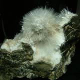 Natrolite + Laumontite Sgurr nam Fiadh, Isle of Skye, Scotland, UK 8 cm x 8 cm x 4 cm Natrolite or mesolite crystals to 12 mm on white crystals that used to be laumontite, but have most likely dehydrated as the specimen has been stored dry. I have had similar material tested from this locality and it proved to be natrolite - courtesy of Alan Dyer - but not this same material. This locality is 5km south of Talisker Bay and - you guessed it - very difficult to access !  Self-collected 2006.  Self-collected 2004. (Author: Mike Wood)