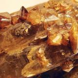 Zircon, quartz. Mount Malosa, Zomba Plateau, Malawi zircon crystals to 7mm on a 6 cm quartz crystal group. (Author: Ru Smith)