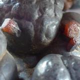 Vanadinita sobre Psilomelana Tadaout, Taouz, Tafilalt, Marruecos 9 x 6 cm.  Detalle (Autor: javier ruiz martin)