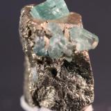 Beryl (var Emerald) Muzo Mine, Boyaca, Colombia 13 x 12 mm (Author: Don Lum)