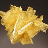 Barite Nueva Esperanza, Puños, Huamalíes Province, Huánuco Department, Peru 5.3 x 7.7 cm. Intergrown group of golden yellow tabular crystals to 3.3 cm on edge from the find in 2008. (Author: crosstimber)