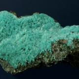 Aurichalcite Bisbee, Warren District, near Bisbee, Cochise County, Arizona, USA 75 x 40 x 19 mm (Author: GneissWare)
