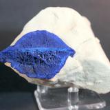 Azurite Malbunka Copper Mine, Areyonga, Northern Territory, Australia 9.5 x 8.0 cm Azurite Lips (Author: Don Lum)