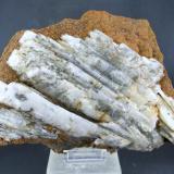 Barita Tomasito, Portman, Sierra Minera de Cartagena-La Unión, La Unión, Murcia, España 20.5 x 13.5 cm (Autor: Diego Navarro)