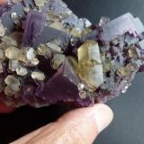Fluorita y Calcita Denton Mine, Harris Creek, Hardin, Illinois, USA 10 x 7 cm.  Detalle (Autor: javier ruiz martin)