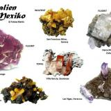 Minerals from Mexico (Author: Tobi)