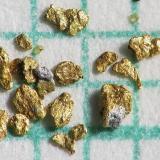 Oro y Plata Arroyos en la zona de Pribram, República Checa pieza más grande  1 mm, en papel milimétrico (Autor: Miro Straka)