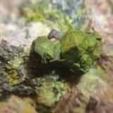 Uraninita<br />Mina Diéresis, Puerto del Cabril, Hornachuelos, Comarca Valle Medio del Guadalquivir, Córdoba, Andalucía, España<br />Cristales de 2 cm.<br /> (Autor: Nieves)