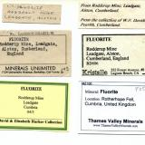 Fluorite - labels collection of labels for the above specimen (Author: Jesse Fisher)