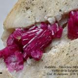 Liddicoatite (rubellite) Tsararano (Mont Ibity) - Sahatany Valley. close up (Author: Roger Warin)