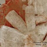 Phenakite Anjanabonoina, Madagascar 65 mm wide (Author: Roger Warin)