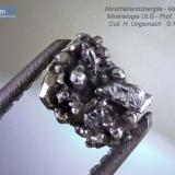 Moschellandsbergite Mexico 7  mm exceptional crystals (Author: Roger Warin)