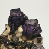 Fluorite Carn Brea Mine, Illogan, Cornwall, England, UK. Field of view 4 cm  (Author: Leon Hupperichs)