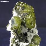 Esfalerita Septemvri mine (Deveti Septemvri mine), Madan ore field, Rhodope Mountains, Smolyan Oblast, Bulgaria Encuadre 1,5 x 1 cm. aprox. Varieda cleofana, cristales de color verde oliva debido a pequeñas cantidades de hierro y manganeso. En matriz de cuarzo. (Autor: Frederic Varela)