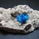 Pentagonita - Cavansita Wagholi Quarries, Wagholi, Pune District, Maharashtra, India 5 x 3 cm. Un agregado azul de pequeños cristales en una cavidad del basalto tapizada por productos de alteración. (Autor: prcantos)