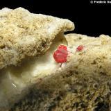Cinabrio Mina Escarlati, Puerto de las Señales, Maraña, León, Castilla y León, España Detalle de otro cristal de 0,3 x 0,2 mm sobre una veta de calcita, con pequeños cristales de cuarzo, todo ello en una matriz silícea. (Autor: Frederic Varela)