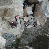 Looking down the 'ladders'. Hard work climbing these with a big heavy rucksack! Photo taken 2005. (Author: Mike Wood)
