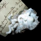 Aragonite var. flos ferri Neugeboren Kindlein mine, Stenn, Zwickau, Saxony, Germany 5 x 3,5 cm Ex Bergakademie Freiberg stock (1850s). (Author: Andreas Gerstenberg)