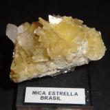 Moscovita Minas Gerais, Brasil. 50mm - 36mm - 36mm Mica Estrella. (Autor: Pedro Naranjo)