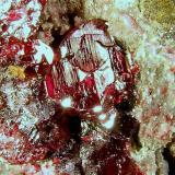 Cinabrio. Mina Las Cuevas, Almadén, Ciudad Real, Castilla-La Mancha, España. 7x4x4 cm. Detalle cristal. Col. y foto Nacho Gaspar. (Autor: Nacho)