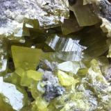 Azufre El Aila, Laredo, Cantabria, España 8x6,5cm; cristal mayor 3cm (Autor: PabloR)