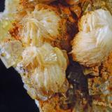 Baritina y Fluorita Ulldemolins - El Priorat - Tarragona - Catalunya - España 52 x 40 x 26 mm Peso de la pieza: 46 gramos Colección y Fotografía de Joan Martinez Bruguera (Autor: Joan Martinez Bruguera)