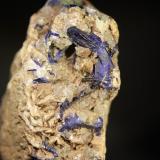 Azurita<br />Mina Milagro (mina Consuelo), Valdelamesa, Mestas de Con, Onís-Cangas de Onís, Comarca de Oriente, Asturias, Principado de Asturias, España<br />Cristal de 2 cm.<br /> (Autor: minero1968)