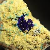 Azurita<br />Mina Delfina, Hoyos de Alda, Ortiguero, Prado, Cabrales, Comarca Oriente, Asturias, Principado de Asturias, España<br />Grupo de pequeños cristales de 1,5 cm.<br /> (Autor: minero1968)