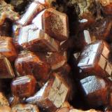Granate   Piedra Parada, Tatatila, Veracruz de Ignacio de la Llave, México 4x3 cm Variedad grosularia (Autor: Ricardo Melendez)